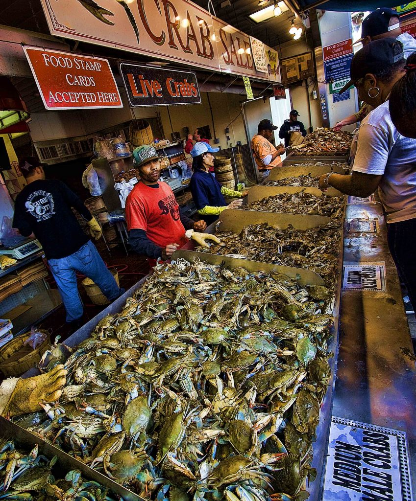 Maryland Blue Crab at DC Fish Market