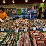 DC Fish Market