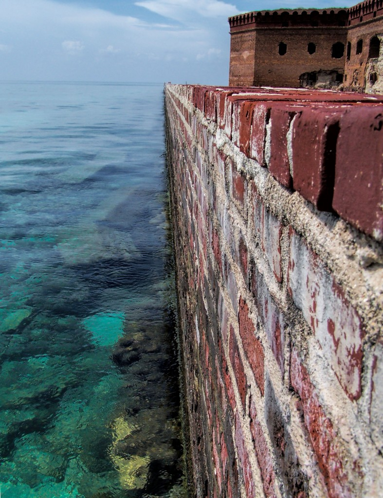 Reef along the mote